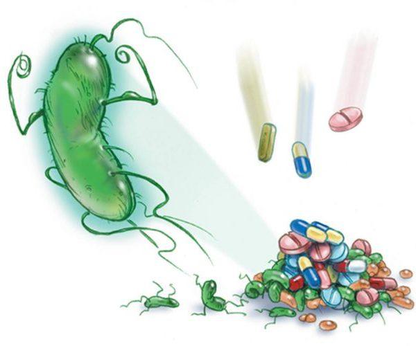 Антибиотики инфекция